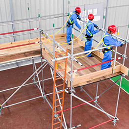 Scaffolding Training Institute